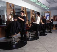 image of logo of First Choice Haircutters franchise business opportunity First Choice Haircutter franchises First Choice Haircutters franchising